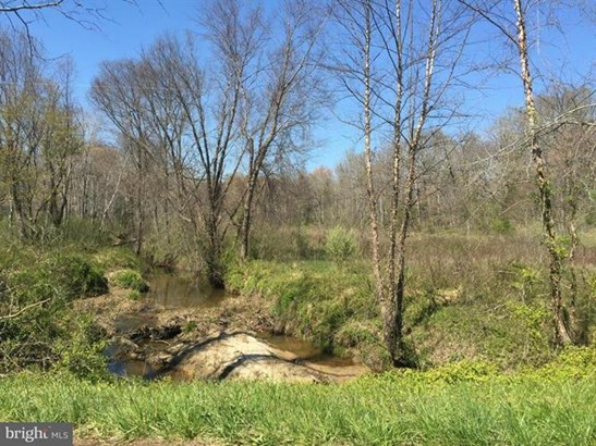 Orange Springs Road, Unionville, VA - USA (photo 2)