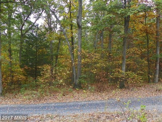 Catron Ridge Rd, Bentonville, VA - USA (photo 1)