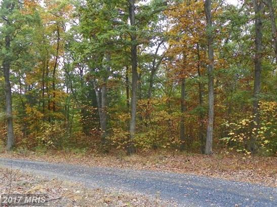 Catron Ridge Rd, Bentonville, VA - USA (photo 3)