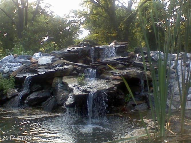 10220 Lakewood Dr, Rockville, MD - USA (photo 3)