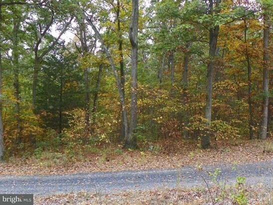 Catron Ridge Road, Bentonville, VA - USA (photo 1)