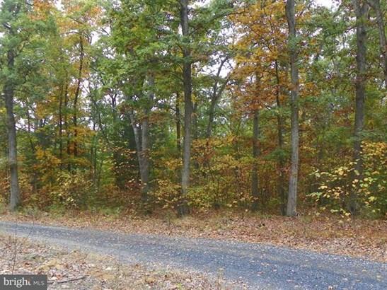 Catron Ridge Road, Bentonville, VA - USA (photo 3)