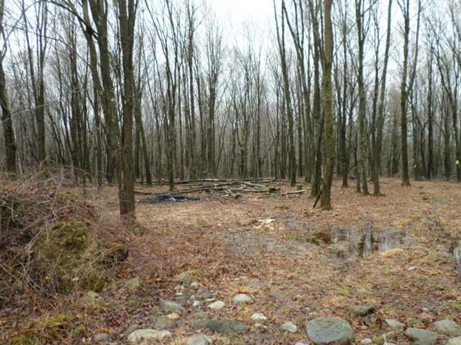 Lot#2 Greenville Turnpike, Port Jervis, NY - USA (photo 2)