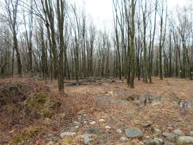 Lot#2 Greenville Turnpike, Port Jervis, NY - USA (photo 3)