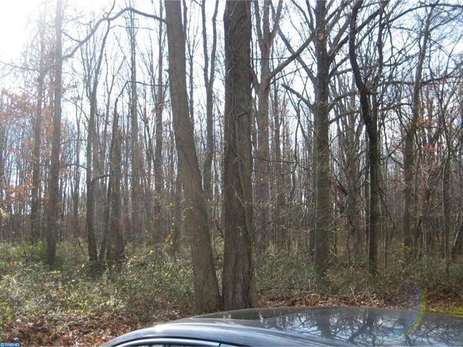 41 Oak Branch Rd, Cranbury, NJ - USA (photo 5)