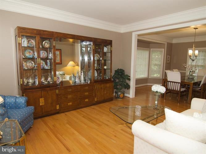 17802 Cricket Hill Drive, Germantown, MD - USA (photo 4)