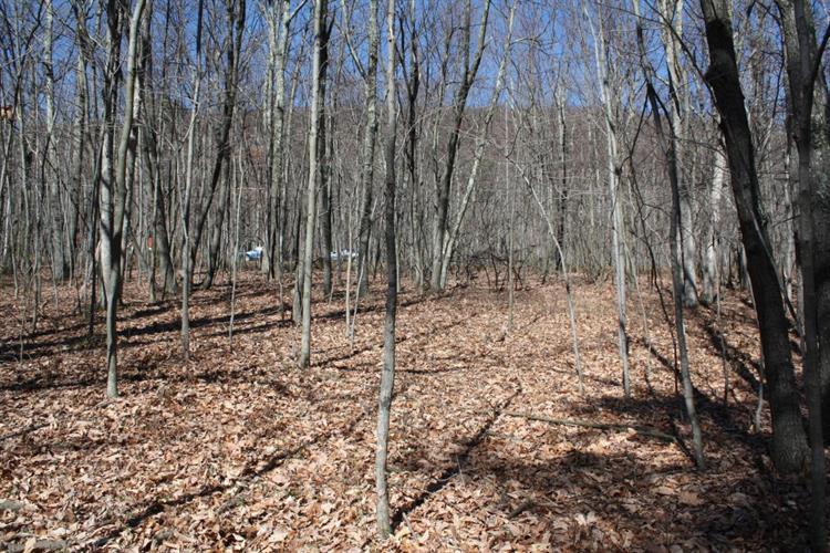 269 Valley View Dr, Lehighton, PA - USA (photo 2)