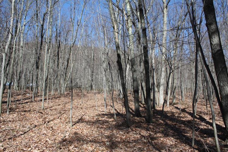 269 Valley View Dr, Lehighton, PA - USA (photo 4)