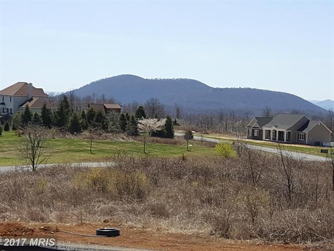 299 Freezeland Loop Rd, Linden, VA - USA (photo 2)