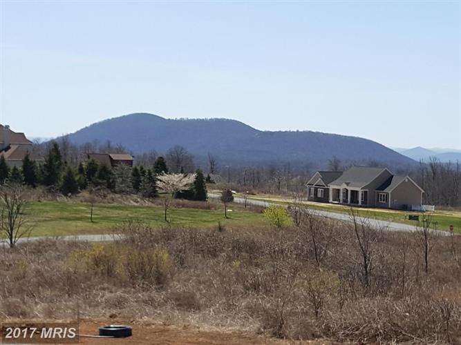 299 Freezeland Loop Rd, Linden, VA - USA (photo 4)