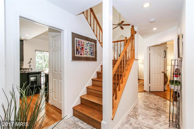 13229 Osterport Dr, Silver Spring, MD - USA (photo 5)