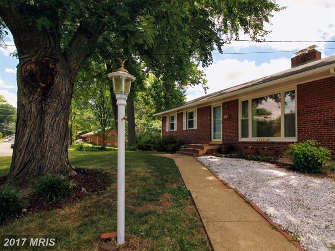 7601 Dunston St, Springfield, VA - USA (photo 3)