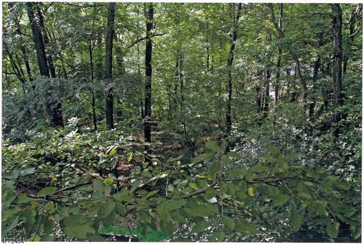 36 Lenape Dr, Montville Township, NJ - USA (photo 2)