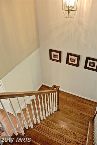 2898 Gretna Pl, Vienna, VA - USA (photo 4)