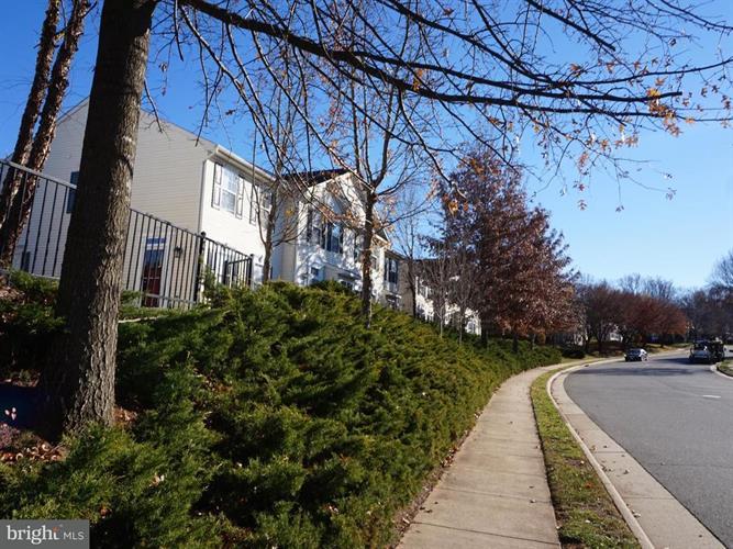20392 River Bank Street, Sterling, VA - USA (photo 4)