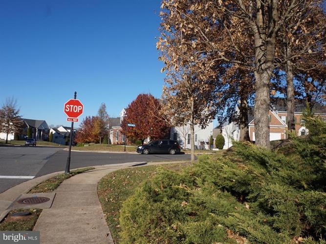 20392 River Bank Street, Sterling, VA - USA (photo 5)
