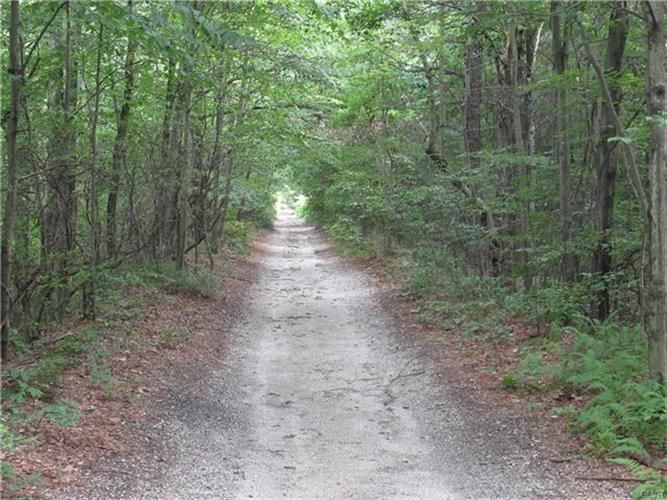 Stoney Lonesome Road, Summit Hill, PA - USA (photo 4)