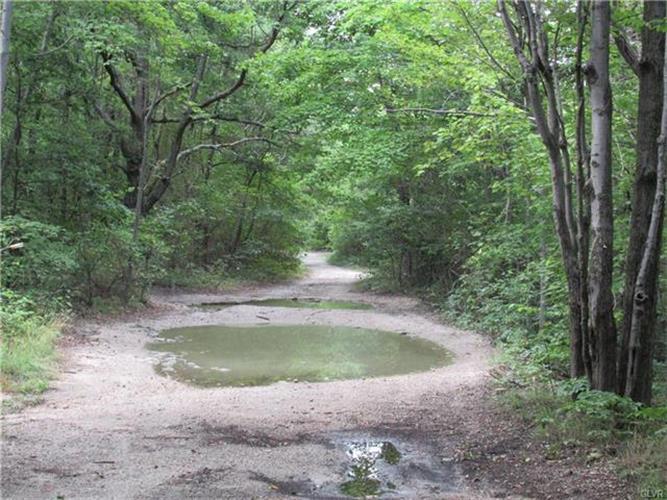 Stoney Lonesome Road, Summit Hill, PA - USA (photo 5)