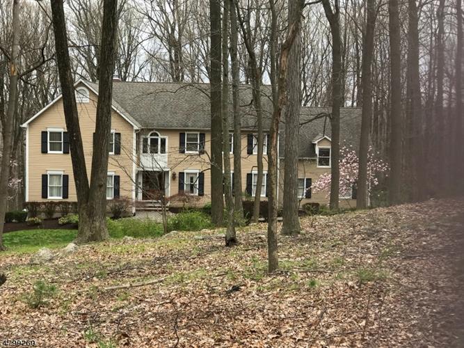 15 Jason Ln, Morris Township, NJ - USA (photo 1)