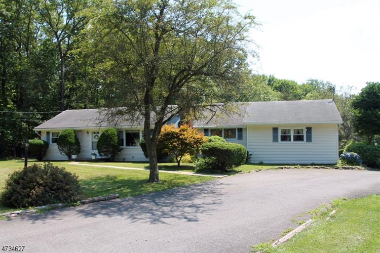 524 County Road 579, Alexandria Township, NJ - USA (photo 1)