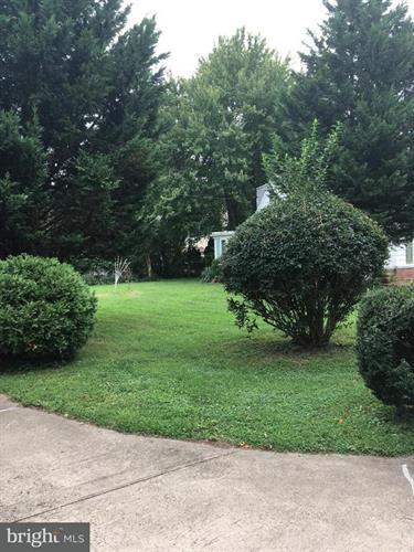 5710 Franconia Road, Alexandria, VA - USA (photo 2)