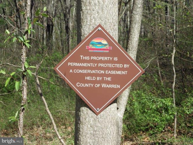 White Pine Court, Bentonville, VA - USA (photo 2)