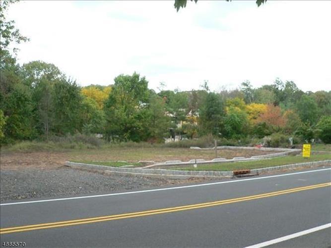 219 Mount Horeb Rd, Warren, NJ - USA (photo 3)