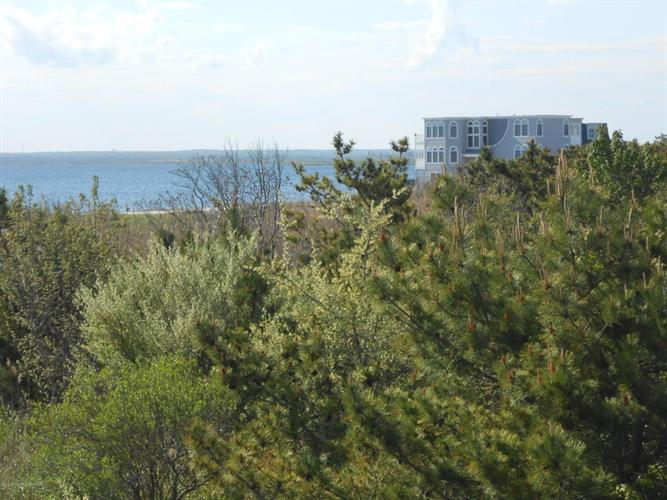 16 Barnegat Avenue, Harvey Cedars, NJ - USA (photo 5)