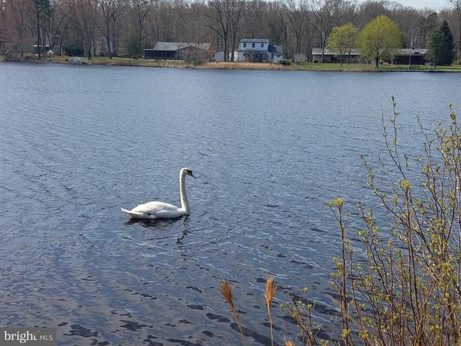 3233 N Shore Drive, Williamstown, NJ - USA (photo 1)