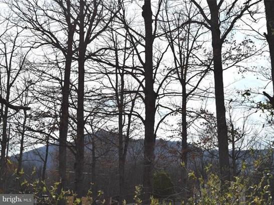 20 Lower View Road, Strasburg, VA - USA (photo 3)