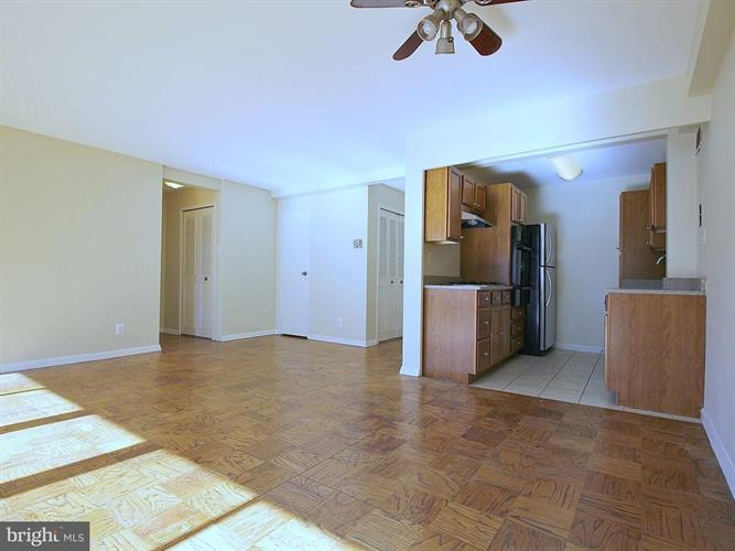 1601 18th Street Nw 516, Washington, DC - USA (photo 4)