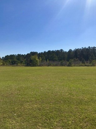 Land - Valdosta, GA (photo 5)