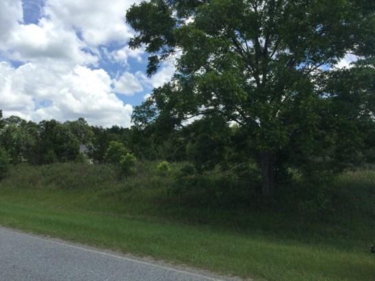 Land - Hahira, GA (photo 1)