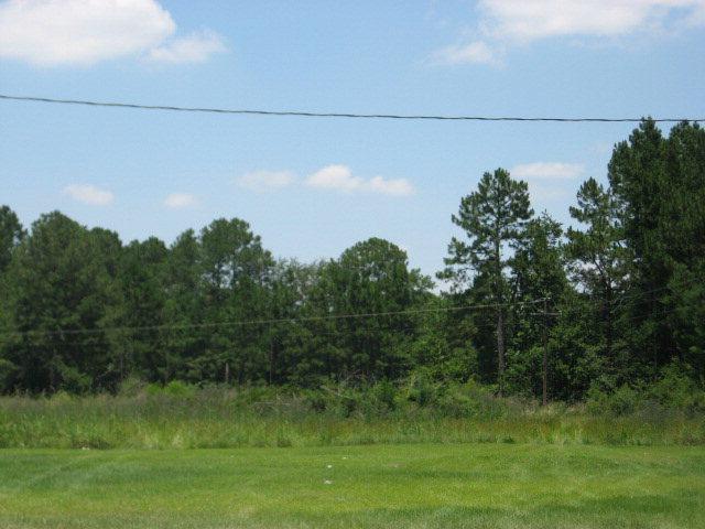 Land - Sparks, GA (photo 1)