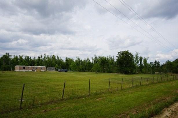 Land - Hahira, GA (photo 4)