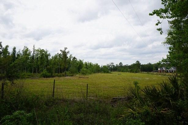 Land - Hahira, GA (photo 5)