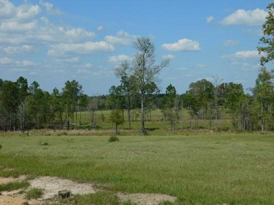 Land - Enigma, GA (photo 4)