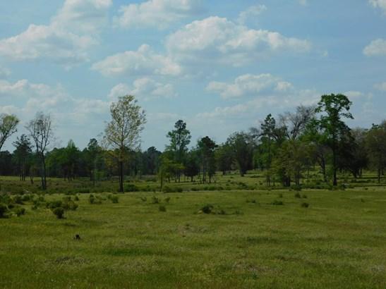 Land - Enigma, GA (photo 5)