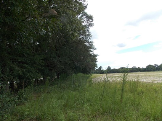 Land - Hahira, GA (photo 3)