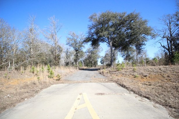 Land - Valdosta, GA (photo 4)