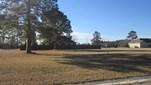 Land - Lakeland, GA (photo 1)