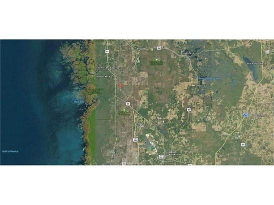 Single Family Use - HOMOSASSA, FL (photo 4)