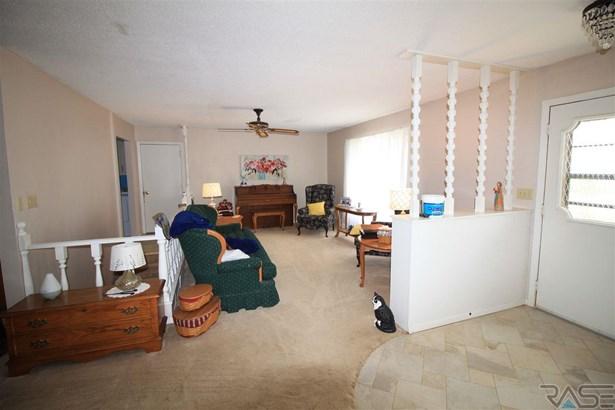 Ranch, Single Family - Chancellor, SD (photo 2)