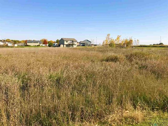 General Comm Land - Worthing, SD (photo 1)