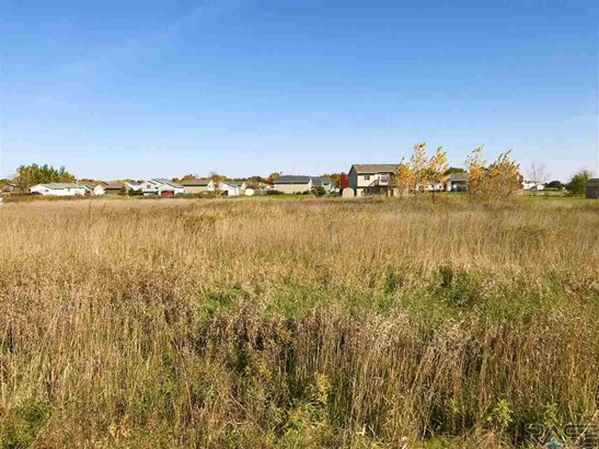 General Comm Land - Worthing, SD (photo 3)