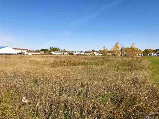 General Comm Land - Worthing, SD (photo 4)