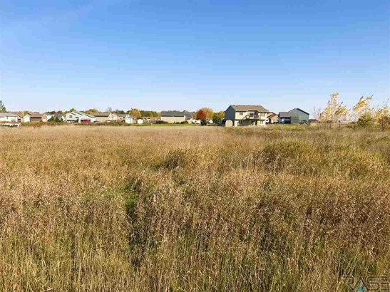 General Comm Land - Worthing, SD (photo 5)