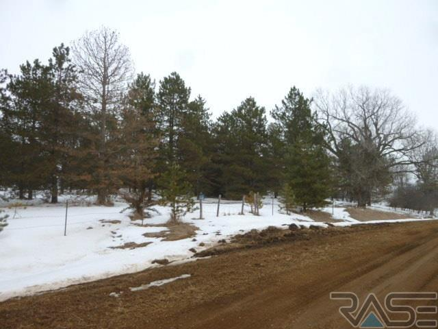 Resi Over 1 acre - Viborg, SD (photo 4)
