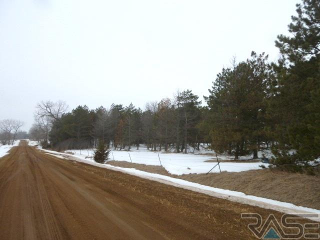 Resi Over 1 acre - Viborg, SD (photo 5)