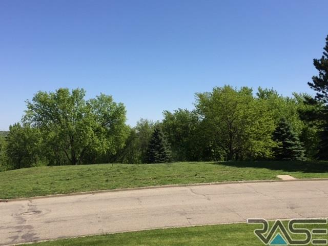 Resi Over 1 acre - Sioux Falls, SD (photo 3)